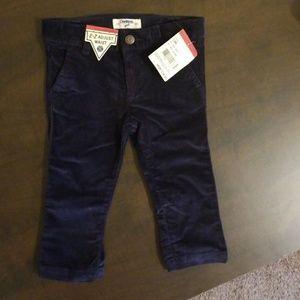 Osh kosh Baby girl velvet pants new